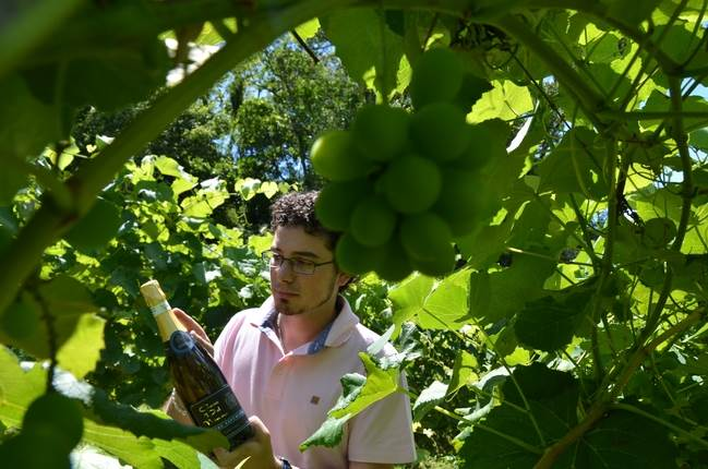 Matheus Damian conquista medalha de ouro no Wine South América