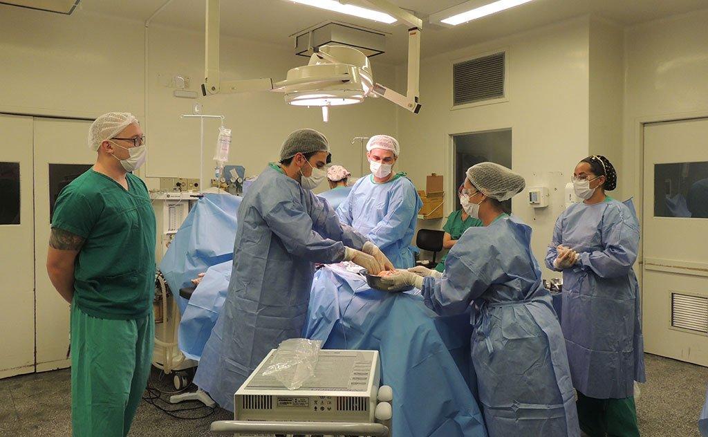 Procedimento irá ajudar cinco pessoas que esperam transplante