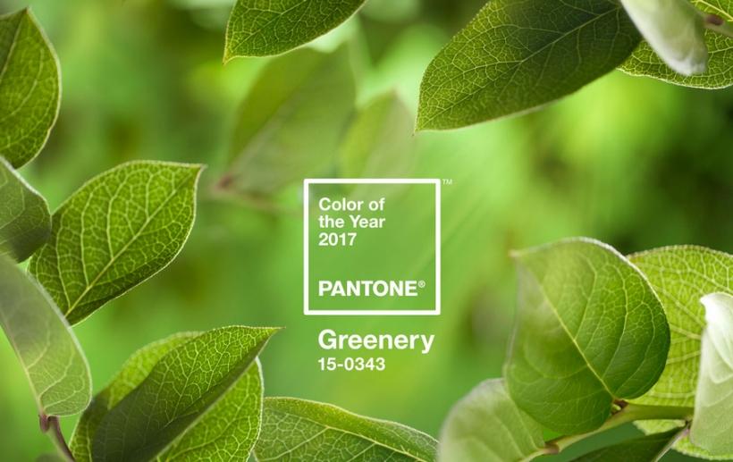 Saiba um pouco mais sobre o tom verde amarelado que lembra começo de primavera
