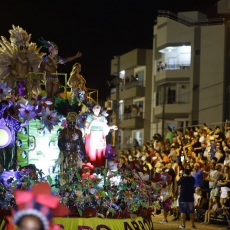 Foliões se Divertem no Carnaval do Vale do Araranguá