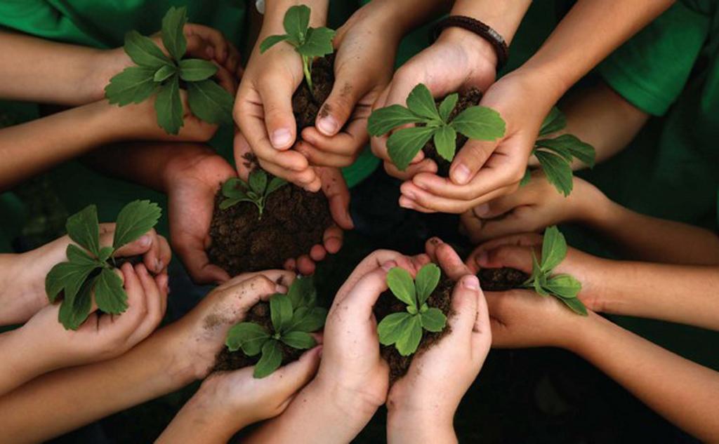 Um dia de diversão, conscientização e preservação ambiental
