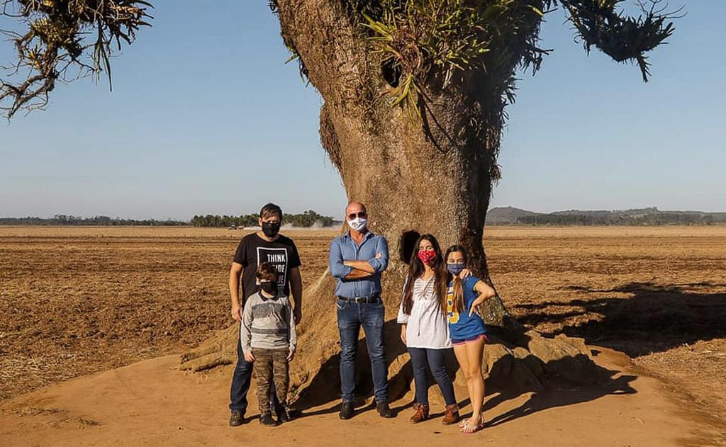 Departamento de Turismo se mobilizou e recuperou áreas danificadas na árvore