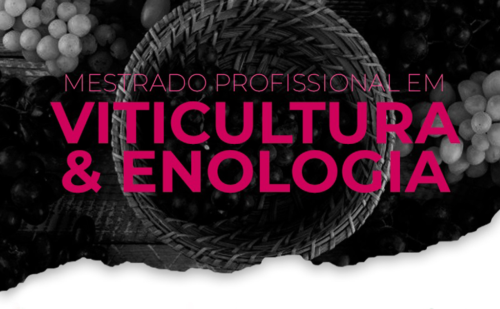 Tem o objetivo de promover a qualificação de profissionais para atuar no setor vitivinícola