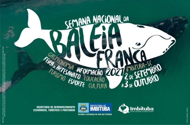 O Litoral Sul catarinense já está recebendo esses visitantes marinhos, aproveite e prestigie o evento que segue até o dia 03 de outubro